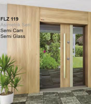 FLZ 119